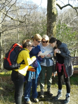 2014 orienteering map reading navigation in the Lake District